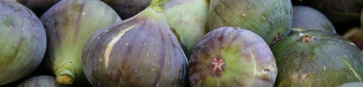 La Figue - Les vinaigres de cidre aux plantes de Bienvenuta